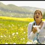 Nothing to Sneeze At: Seasonal Allergies