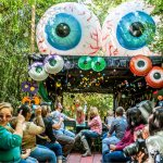 A Harvest of Ideas – Behind the Boone Hall Pumpkin Patch