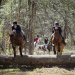 Fox Hunting: Steeped in Tradition and Ruggedly Refined
