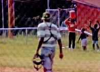 Black Baseball East of the Cooper 2