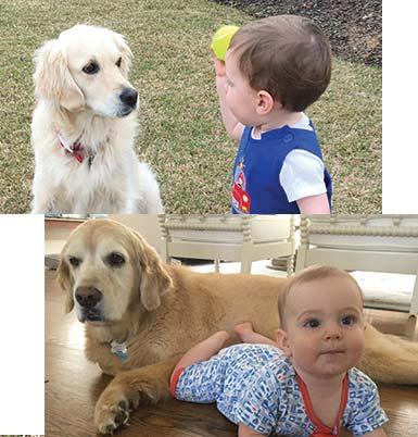 Baby Ben with Dogs Piper and Alice