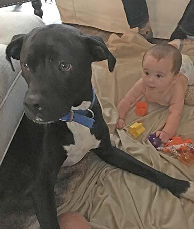 Baby Brooks and dog, Mako