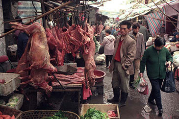 A market in Wuhan, China