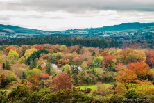 Autumn in the Slieve Blooms by Lori Strang