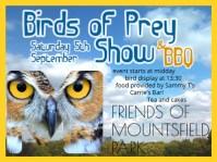 Birds-of-Prey-Leaflet-400