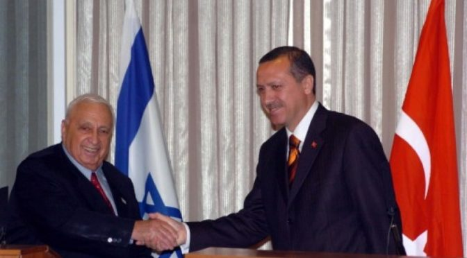 erdogan sharon