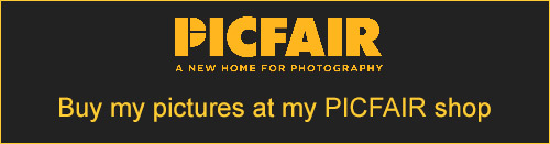 Buy our photos - Click to go to our Picfair Shop Shop