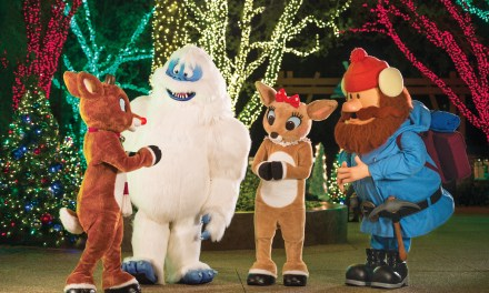 SeaWorld San Diego 2020 CHRISTMAS CELEBRATION relies on outdoor charms, adds new entertainment offerings