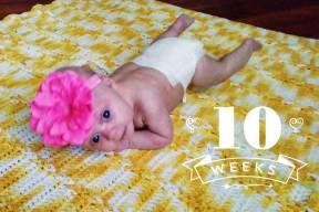 10 Week Photo