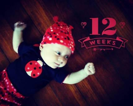 12 Week Photo
