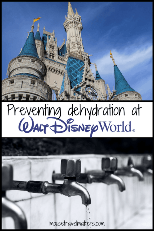 "Preventing dehydration in kids and adults while at Disney can help to avert a bad vacation experience. Get some tips on what to pack for a ""hydrated"" day at Walt Disney World. #dehydration #Dehydration #Effects #HealthyBody #dehydration #water #healthtips #summertips #medicaltips #help #drought #theheatn and their home remedies. #dehydration #water #healthtips #summertips #medicaltips #help #drought #theheat #disney #disneyworld #waltdisneyworld #disneywithkids #familytravel #travelsafe #florida #summerheat"
