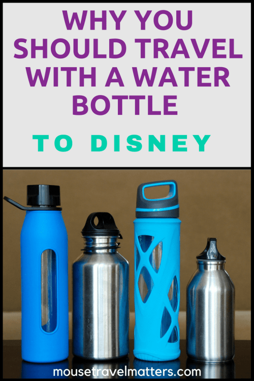 Best water bottles to bring to Disney! Save money and hassle by buying these smart choices now. Different water bottle types for everyone in the family, from kids to adults. * Best infuser water bottle * Best sports water bottle #insulatedbottle #waterbottle #Disney #Disneyworld #waltdisneyworld #Disneyland #Orlando #florida #budget #traveltips #drinkmorewater #stayhydrated #health #wellness #cleaneating #healthyeating #style #stylishbottle #cutewaterbottle #GoGreen #Ecofriendly #greensyourcolour