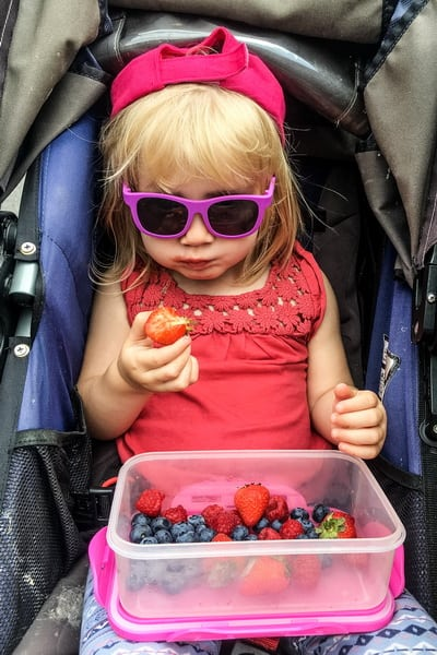 Assuming you have decided to bring or rent a stroller for your next Walt DisneyWorld vacation with kids, here are a handful of tips and reminders for all stroller users within the Disney Theme parks.