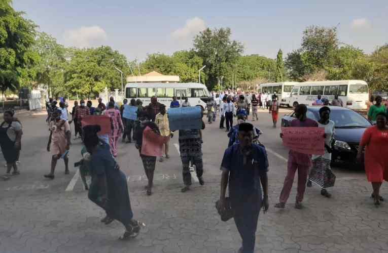 SSANU/NASU LAUTECH observe 3-day national protest