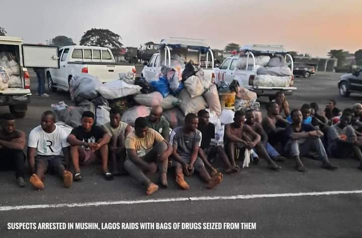 Just In: Corps member, 662 others arrested by NDLEA