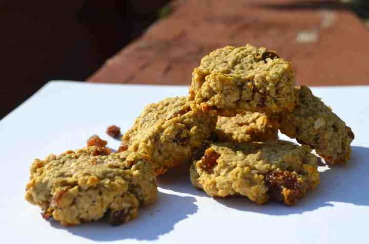 Sugar-Free, Low-Fat, Low-Carb, Mini Oatmeal Raisin Cookies!