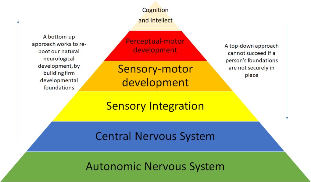 Neuro-developmental Therapy - retained primitive reflexes