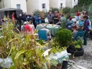 garden event 2