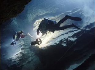 "A scene from ""Diving Into the Unknown"""