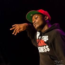 Tremplin hip-hop (PhilippeH.fr)-55
