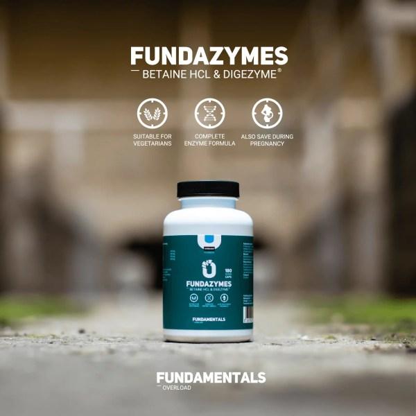 Fundamentals Fundazymes