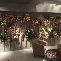 Visite-nos e conheça a nossa colecção de Flores e Plantas.