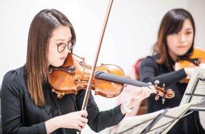 Joy Strings trio