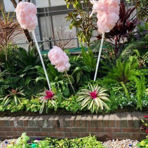 "Krohn's ""A Garden of Pure Imagination"""
