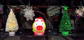 Oh No! The Christmas Pig