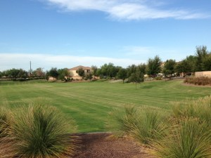 Homes for Sale in Senita in Maricopa AZ