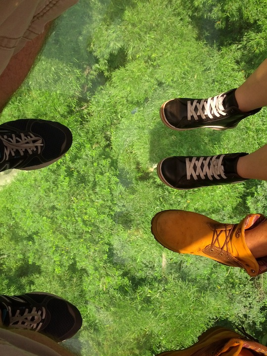 Riding-the-Maokong-Gondola-3