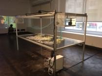 Stephanie Rothenberg - How Food Moves - Rowan University Art Gallery