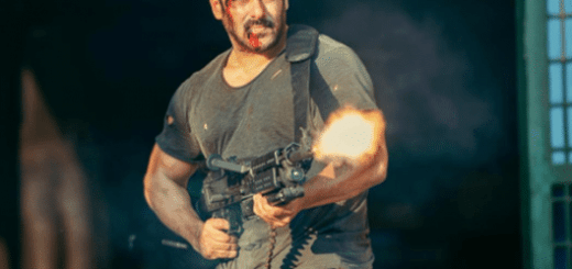 Tiger Zinda Hai 41st day Box Office Collection