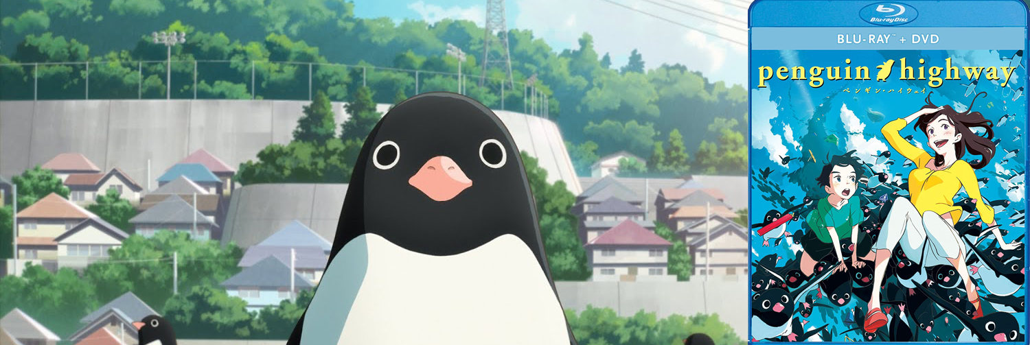 Penguin Highway is coming to Blu-ray and DVD this week from Shout! Factory.