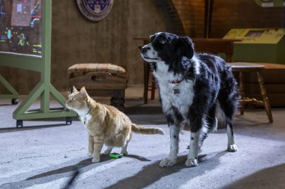 Cats & Dogs 3: 01-06-20, Unit Day 01 Photo Credit: Ryan Plummer/2020 Warner Bros. Entertainment Inc.