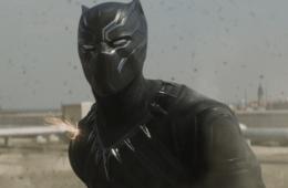 panther_web