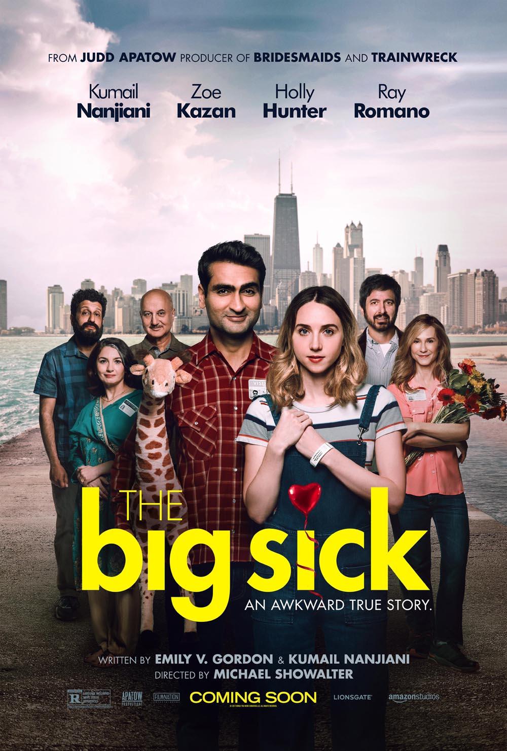 the-big-sick-poster