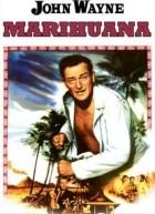 Marihuana (1953)