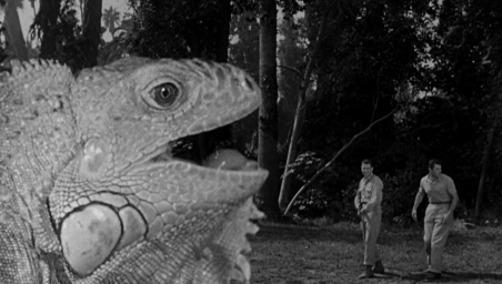 The-Cyclops-1957-giant-lizard