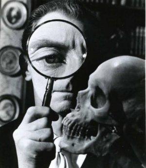 the skull 3
