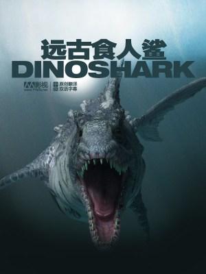 Dinoshark-2010-2