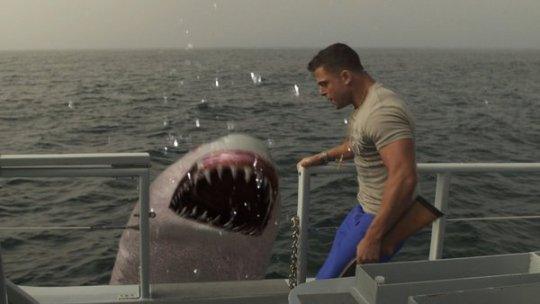 jersey-shore-shark-attack_shark-boat