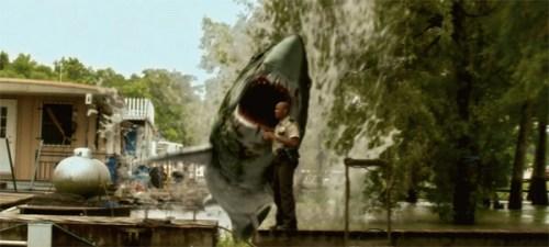 swamp-shark1
