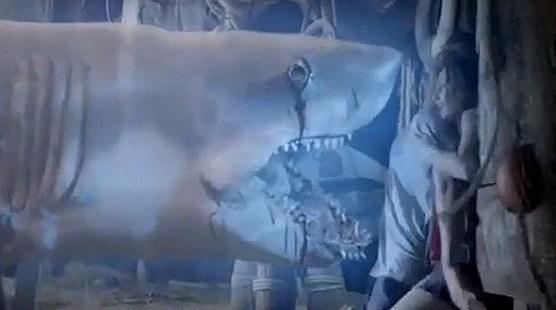 ghost-shark-2