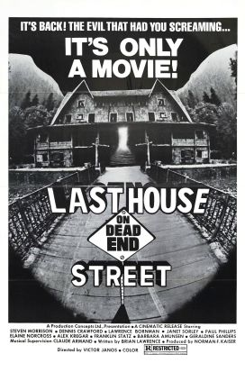 Last_house_on_dead_end_street_poster_01