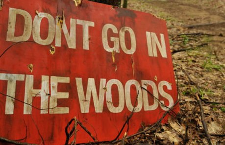 don't go in the woods 2