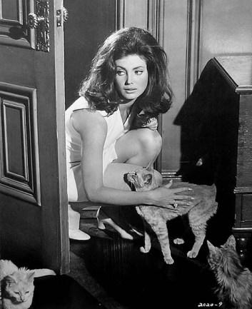 gayle-hunnicutt-in-eye-of-the-cat-1969
