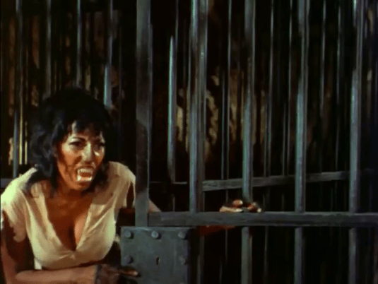 The-Twilight-People-Pam-Grier-Ayesa-panther-woman