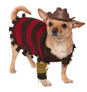 Freddy-Krueger-pet-costume