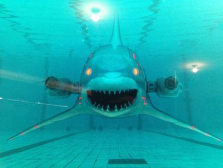 Roboshark-swimming-pool-2015-Jeffrey-Lando